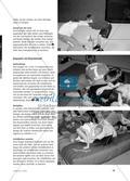 Ringen und Raufen - Von Zweikämpfen und Ringspielen zum Sumo-Ringen Preview 4