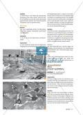 Olympische Wasserspiele - Die etwas anderen Wettkampfspiele Preview 5