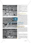 Kraulschwimmen lernen - Von der Rückenlage über die Seitlage in die Bauchlage Preview 3