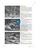 Kraulschwimmen lernen - Von der Rückenlage über die Seitlage in die Bauchlage Preview 5