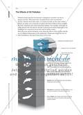 The Day After the Oil Spill - Sprechaufgaben für den bilingualen Biologieunterricht stellen Preview 6