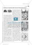 """Magnetische und elektrische Anziehungskräfte auf dem Prüfstand - Die Fallstudie """"William Gilbert"""" Preview 2"""