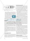 Elektrische Leitungsvorgänge in verschiedenen Medien - Didaktische und fachliche Grundlagen Preview 5