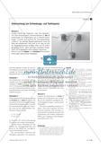 Akustische Schwebungen untersuchen - Entwicklung von Simulationsprogrammen unter Verwendung dynamischer Geometriesoftware Preview 4