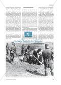 Widerstand und Bandenbekämpfung an der Ostfront des Zweiten Weltkriegs Preview 2