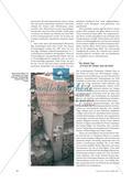 Archäologie: Forschung und Fundstücke Preview 3