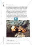 Ötzi: Stationenlernen zum Mann aus dem Eis Preview 6