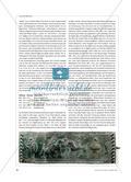 Die keltische Gesellschaft in antiken Darstellungen und archäologischen Befunden Preview 3