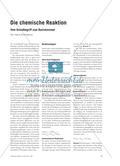 Die chemische Reaktion - Vom Grundbegriff zum Basiskonzept Preview 1