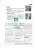 Die chemische Reaktion - Vom Grundbegriff zum Basiskonzept Preview 2