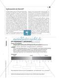 Körperpflegemittel im Chemieunterricht Preview 6