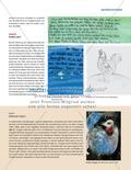 Der Hahn macht blau - Zu einer Farbfamilie schreiben und malen Preview 4