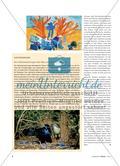 Der Seidenlaubenvogel und sein Balzverhalten Preview 3