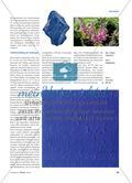 Die Farbe Blau unter fachwissenschaftlichen Aspekten Preview 2
