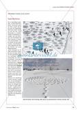 Kunst mit dem Körper und in der Natur: Engelsfiguren im Schnee Preview 4