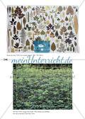 Pflanzen als Material und Konstrukt der Kunst Preview 5