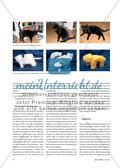Katzen-Körper - Skulpierendes Arbeiten mit verschiedenen Materialien Preview 2