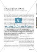 """Im Netz der Cornelia Sollfrank - Zum Beispiel: Die Ausstellung """"Originale und andere Fälschungen"""" Preview 1"""