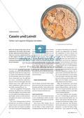 Casein und Leinöl - Farben nach eigenen Rezepten herstellen Preview 1