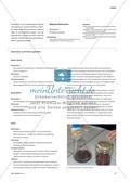 Tinte und Schwarztee - Materialherstellung im fachübergreifenden Unterricht Preview 2