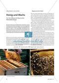 Honig und Wachs - Zur Vermittlung der Beuys'schen Materialikonologie Preview 1