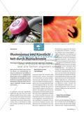 Illusionismus und Künstlichkeit durch Monochromie - Wandgestaltung in Grisaille-Technik nach Foto-Vorlagen Preview 1