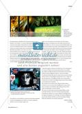 """Fotografische Illustrationen - zum Gedicht """"Der Panther"""" von Rainer Maria Rilke Preview 6"""