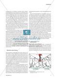 Strukturbilder - Erkenntnismittel im Kunstunterricht Preview 2