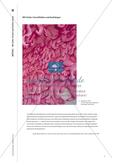 Material-Teil: Formgebung und Wirkung von Farbe in der bildenden Kunst Preview 11