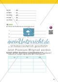 Nomen, Pronomen und Begleiter Preview 12
