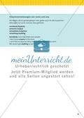 Nomen, Pronomen und Begleiter Preview 16