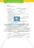 Nomen, Pronomen und Begleiter Preview 17