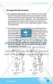 Aufgaben des Nervensystems Preview 8