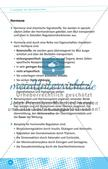Aufgaben des Nervensystems Preview 9