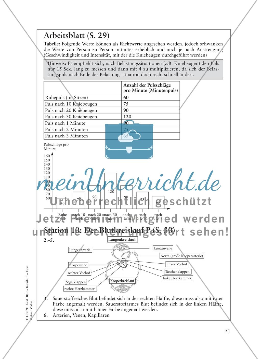 Passatkreislauf Arbeitsblatt Lösung