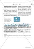 Besonderheiten der Ständegesellschaft Preview 3
