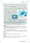 Allergien: Pollen, Hausstaub, Nahrungsmittel Preview 5