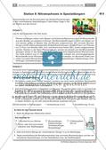 Die Elemente des Periodensystems - eine Baumarkterkundung Preview 10