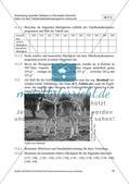 Untersuchung von Daten mit dem Tabellenkalkulationsprogramm Preview 17