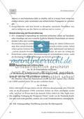 Die Potsdamer Konferenz: Bestimmungen und Meinung der deutschen Bevölkerung Preview 3
