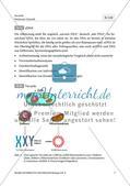 Forschungsmethoden der Paläogenetik am Beispiel des Höhlenbärs Preview 5