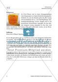 Spannungsreihe der Halogene: Vorversuche Preview 4