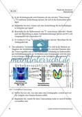 Künstliche Strahlenbelastung und die moderne Medizin Preview 10