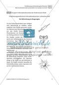 Leihmutterschaft: Meinung bilden Preview 7