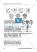 Leihmutterschaft: Meinung bilden Preview 8
