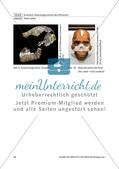 Merkmale der Gattung Preview 7