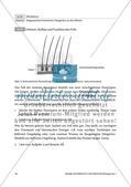 Die Fellstruktur als Lösungsstrategie zum Überwintern Preview 4