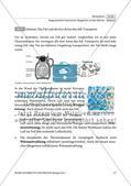 Die Fellstruktur als Lösungsstrategie zum Überwintern Preview 5