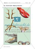 Gestaltung von Tieren aus Metallabfall Preview 12