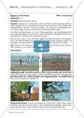 Naturmaterialien: Landart Preview 12
